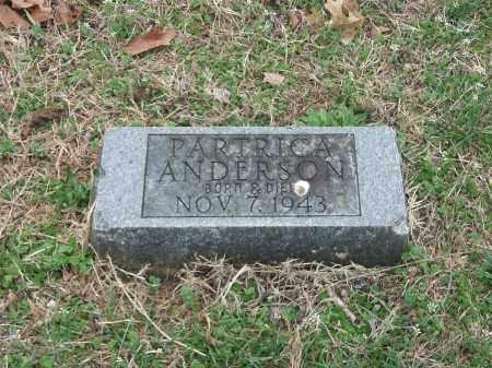 ANDERSON, PATRICIA - Marion County, Arkansas | PATRICIA ANDERSON - Arkansas Gravestone Photos