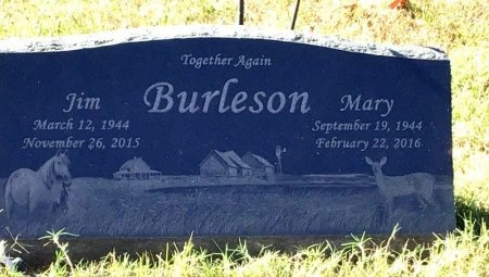 BURLESOSN, MARY - Marion County, Arkansas   MARY BURLESOSN - Arkansas Gravestone Photos