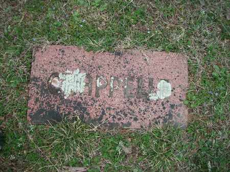 CHAPPELLE, . - Marion County, Arkansas | . CHAPPELLE - Arkansas Gravestone Photos
