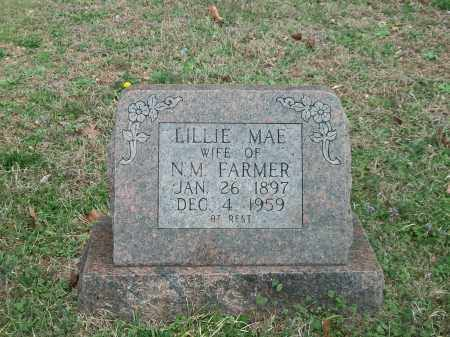WAGONER FARMER, LILLIE MAE - Marion County, Arkansas | LILLIE MAE WAGONER FARMER - Arkansas Gravestone Photos