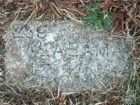 JENKINS, ALABAMA - Marion County, Arkansas | ALABAMA JENKINS - Arkansas Gravestone Photos