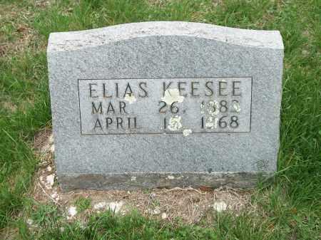 KEESEE, ELIAS ROY - Marion County, Arkansas   ELIAS ROY KEESEE - Arkansas Gravestone Photos