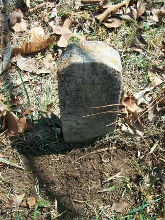LEWIS, BILL - Marion County, Arkansas   BILL LEWIS - Arkansas Gravestone Photos