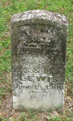 LEWIS, TROY - Marion County, Arkansas   TROY LEWIS - Arkansas Gravestone Photos