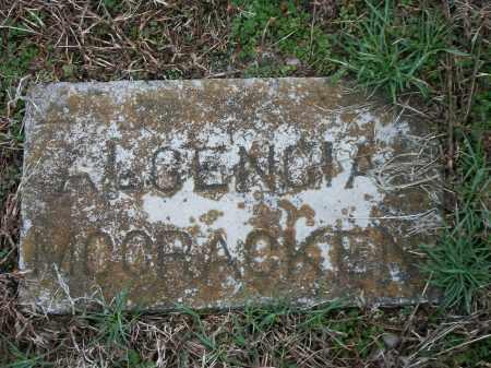 MCCRACKEN, ALGENCIA - Marion County, Arkansas | ALGENCIA MCCRACKEN - Arkansas Gravestone Photos