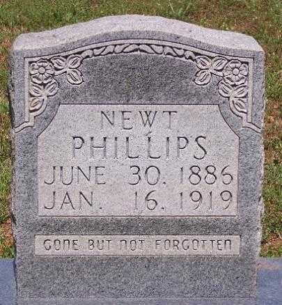 PHILLIPS, NEWT - Marion County, Arkansas | NEWT PHILLIPS - Arkansas Gravestone Photos