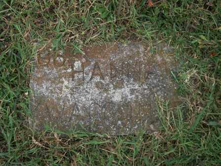 WAGGONER, HANNAH CATHERINE - Marion County, Arkansas | HANNAH CATHERINE WAGGONER - Arkansas Gravestone Photos