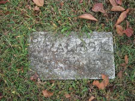 WAGGONER, MALISSA ANN - Marion County, Arkansas | MALISSA ANN WAGGONER - Arkansas Gravestone Photos