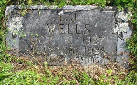 WELLS, E. J. - Marion County, Arkansas | E. J. WELLS - Arkansas Gravestone Photos