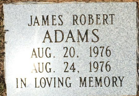 ADAMS, JAMES ROBERT - Miller County, Arkansas | JAMES ROBERT ADAMS - Arkansas Gravestone Photos