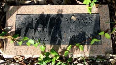 ADAMS, JUANITA - Miller County, Arkansas | JUANITA ADAMS - Arkansas Gravestone Photos