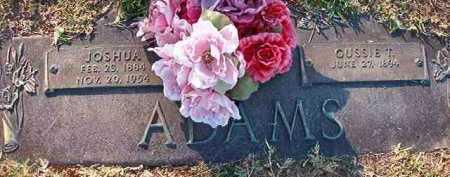 ADAMS, GUSSIE T - Miller County, Arkansas   GUSSIE T ADAMS - Arkansas Gravestone Photos