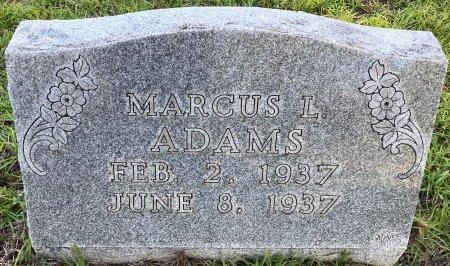 ADAMS, MARCUS L - Miller County, Arkansas | MARCUS L ADAMS - Arkansas Gravestone Photos