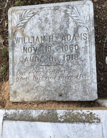 ADAMS, WILLIAM H - Miller County, Arkansas | WILLIAM H ADAMS - Arkansas Gravestone Photos
