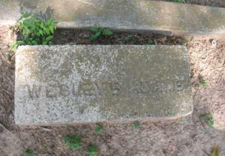 ADAMS, WESLEY B - Miller County, Arkansas   WESLEY B ADAMS - Arkansas Gravestone Photos