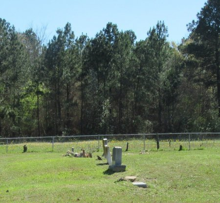 *OVERVIEW,  - Miller County, Arkansas    *OVERVIEW - Arkansas Gravestone Photos