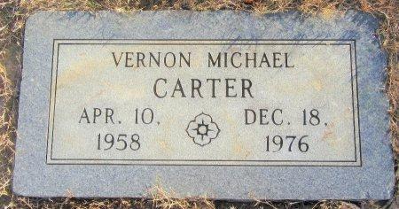 CARTER, VERNON MICHAEL - Miller County, Arkansas | VERNON MICHAEL CARTER - Arkansas Gravestone Photos