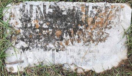 GREEN, LIZZIE - Miller County, Arkansas | LIZZIE GREEN - Arkansas Gravestone Photos
