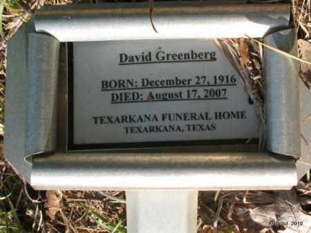 GREENBERG, DAVID - Miller County, Arkansas   DAVID GREENBERG - Arkansas Gravestone Photos