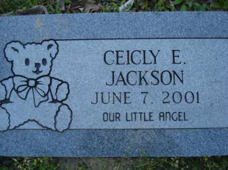JACKSON, CEICLY E - Miller County, Arkansas | CEICLY E JACKSON - Arkansas Gravestone Photos