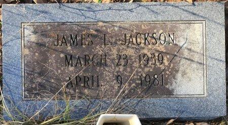 JACKSON, JAMES L - Miller County, Arkansas | JAMES L JACKSON - Arkansas Gravestone Photos