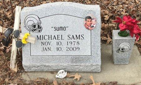 SAMS, MICHAEL  - Miller County, Arkansas   MICHAEL  SAMS - Arkansas Gravestone Photos