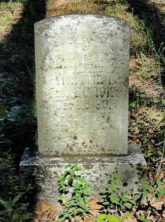 WHITNEY, MARY HELEN - Miller County, Arkansas | MARY HELEN WHITNEY - Arkansas Gravestone Photos