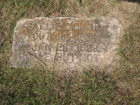 YOUNG, CALLIE - Miller County, Arkansas | CALLIE YOUNG - Arkansas Gravestone Photos