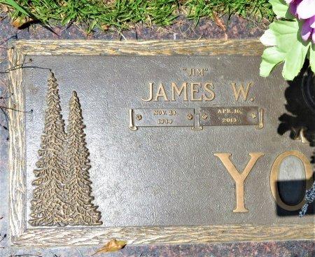 YOUNG, JAMES W. (CLOSEUP) - Miller County, Arkansas   JAMES W. (CLOSEUP) YOUNG - Arkansas Gravestone Photos