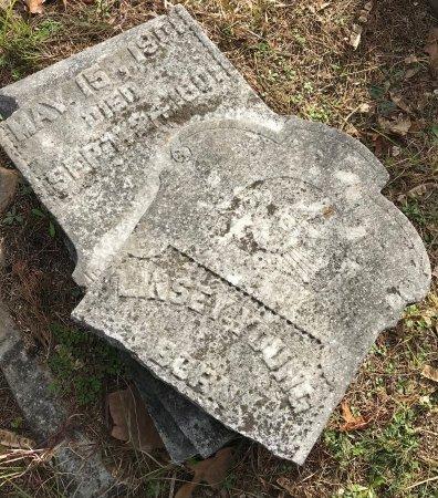 YOUNG, LINSEY - Miller County, Arkansas   LINSEY YOUNG - Arkansas Gravestone Photos