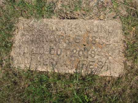 YOUNG, SARAH - Miller County, Arkansas | SARAH YOUNG - Arkansas Gravestone Photos