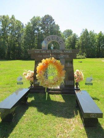 YOUNG, PEGGY M. - Miller County, Arkansas | PEGGY M. YOUNG - Arkansas Gravestone Photos