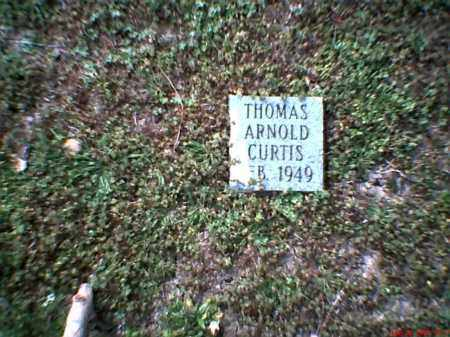 CURTIS, THOMAS ARNOLD - Mississippi County, Arkansas | THOMAS ARNOLD CURTIS - Arkansas Gravestone Photos