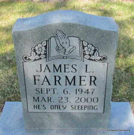 FARMER, JAMES L - Mississippi County, Arkansas | JAMES L FARMER - Arkansas Gravestone Photos