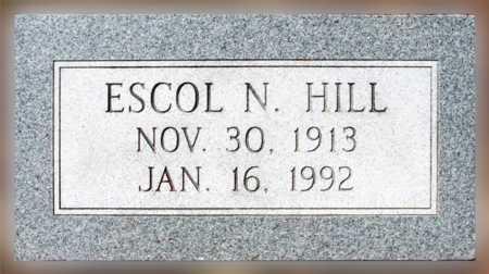HILL, ESCOL N - Mississippi County, Arkansas   ESCOL N HILL - Arkansas Gravestone Photos