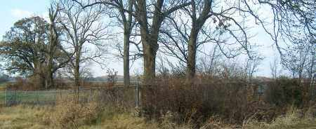 *SIMMONS PLANTATION MEMORIAL C, OVERVIEW - Mississippi County, Arkansas | OVERVIEW *SIMMONS PLANTATION MEMORIAL C - Arkansas Gravestone Photos