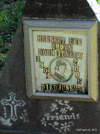 BROWN, HERBERT LEE - Monroe County, Arkansas   HERBERT LEE BROWN - Arkansas Gravestone Photos