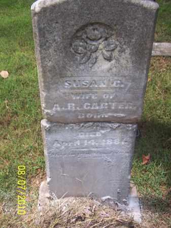 CARTER, SUSAN C - Monroe County, Arkansas | SUSAN C CARTER - Arkansas Gravestone Photos