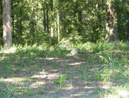 *OVERVIEW,  - Monroe County, Arkansas    *OVERVIEW - Arkansas Gravestone Photos
