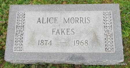 MORRIS FAKES, ALICE - Monroe County, Arkansas | ALICE MORRIS FAKES - Arkansas Gravestone Photos
