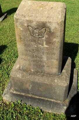 UNKNOWN, GEORGE HARRY - Monroe County, Arkansas   GEORGE HARRY UNKNOWN - Arkansas Gravestone Photos