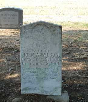 WILSON, IDA - Monroe County, Arkansas   IDA WILSON - Arkansas Gravestone Photos