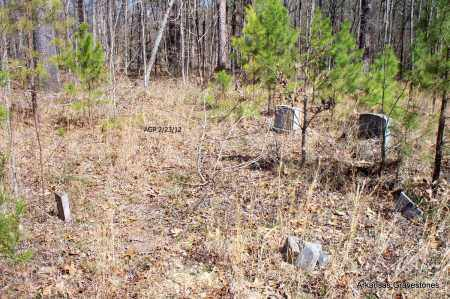 * OVERVIEW,  - Montgomery County, Arkansas |  * OVERVIEW - Arkansas Gravestone Photos
