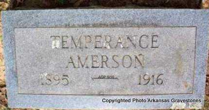 AMERSON, TEMPERANCE - Montgomery County, Arkansas | TEMPERANCE AMERSON - Arkansas Gravestone Photos