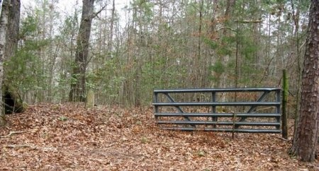 *BLACK CEMETERY VIEW,  - Montgomery County, Arkansas    *BLACK CEMETERY VIEW - Arkansas Gravestone Photos