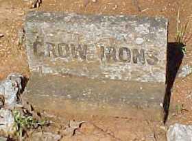 IRONS, JAMES CROW - Montgomery County, Arkansas   JAMES CROW IRONS - Arkansas Gravestone Photos