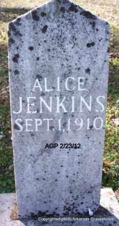 JENKINS, ALICE - Montgomery County, Arkansas   ALICE JENKINS - Arkansas Gravestone Photos