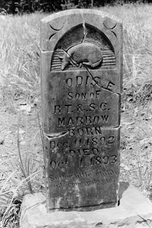 MARROW, ODIS E - Montgomery County, Arkansas | ODIS E MARROW - Arkansas Gravestone Photos