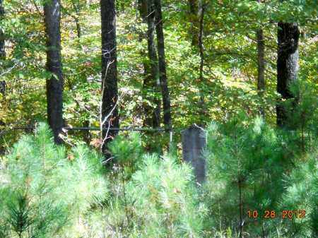 *OVERVIEW,  - Montgomery County, Arkansas |  *OVERVIEW - Arkansas Gravestone Photos