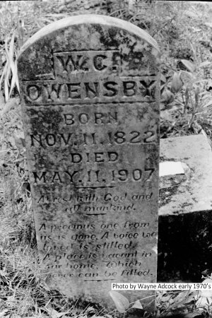 OWENSBY, W. C. - Montgomery County, Arkansas | W. C. OWENSBY - Arkansas Gravestone Photos